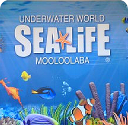 Purchase Sea Life 20% Discount Tickets